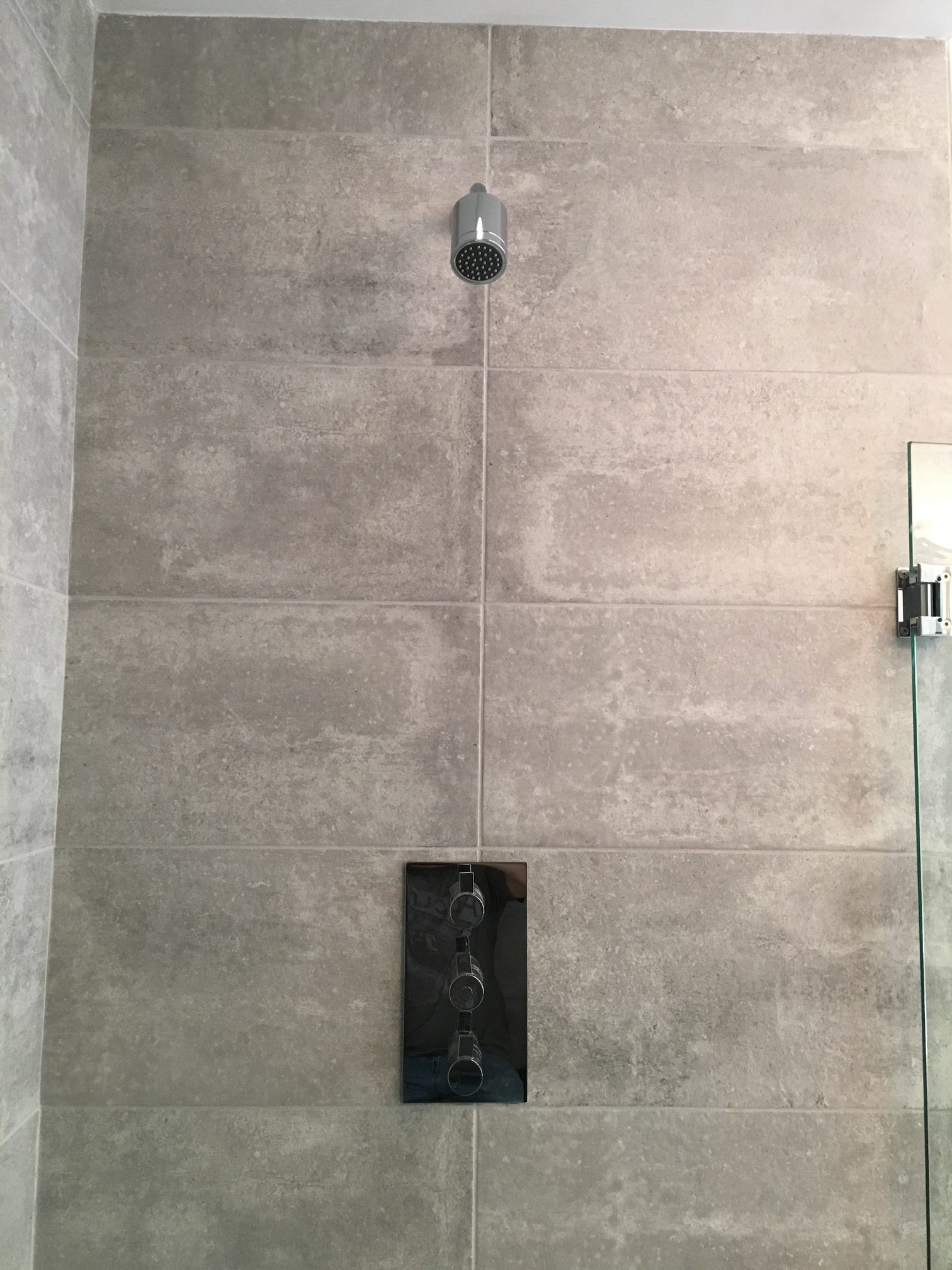 Summerfield Rain and Shower Head